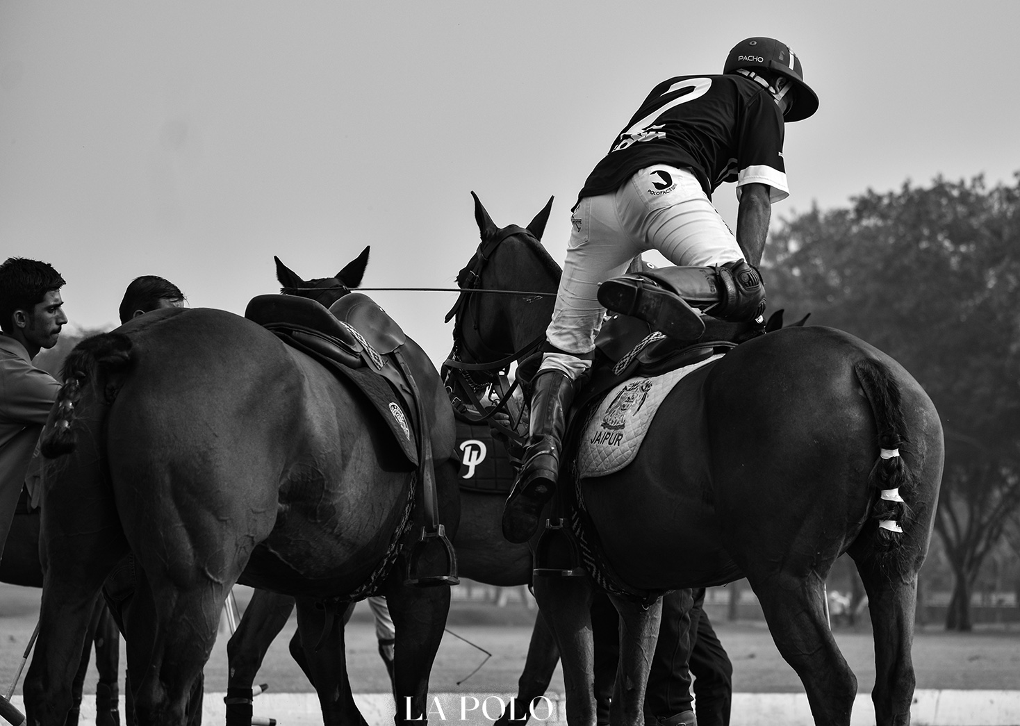 IPA NATIONAL POLO CHAMPIONSHIP OPEN
