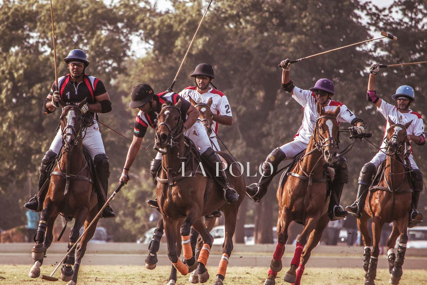 HH Maharaja Sawai Bhawani Singh Cup lands into its Second Day | Jaipur Season | January 2020