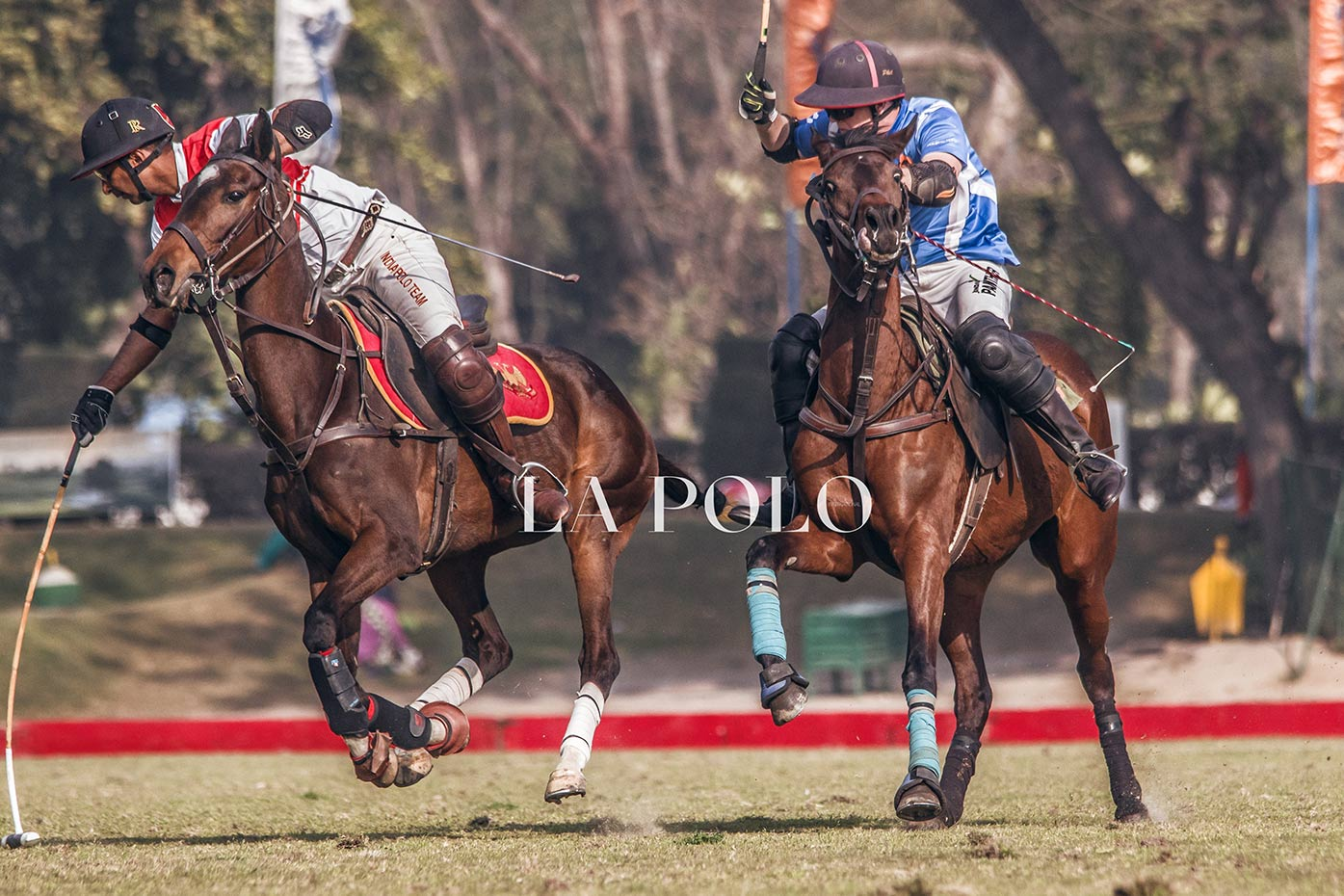 Starting Off With The Second Tournament Of Delhi Polo Season 2020
