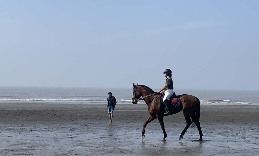 horse-industry-la-polo