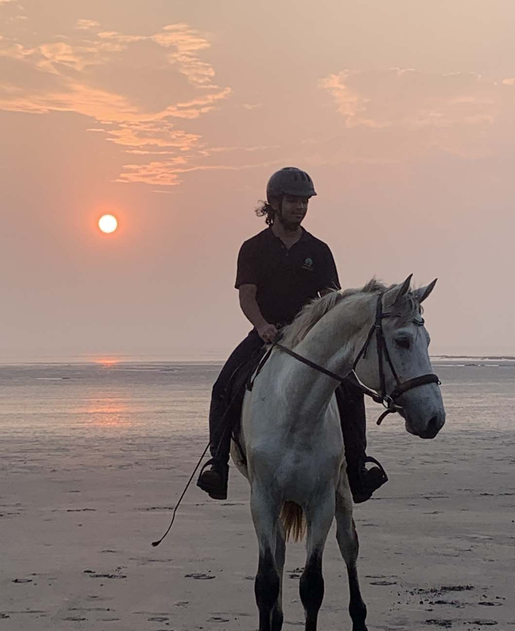 horse-industry-in-india-la-polo