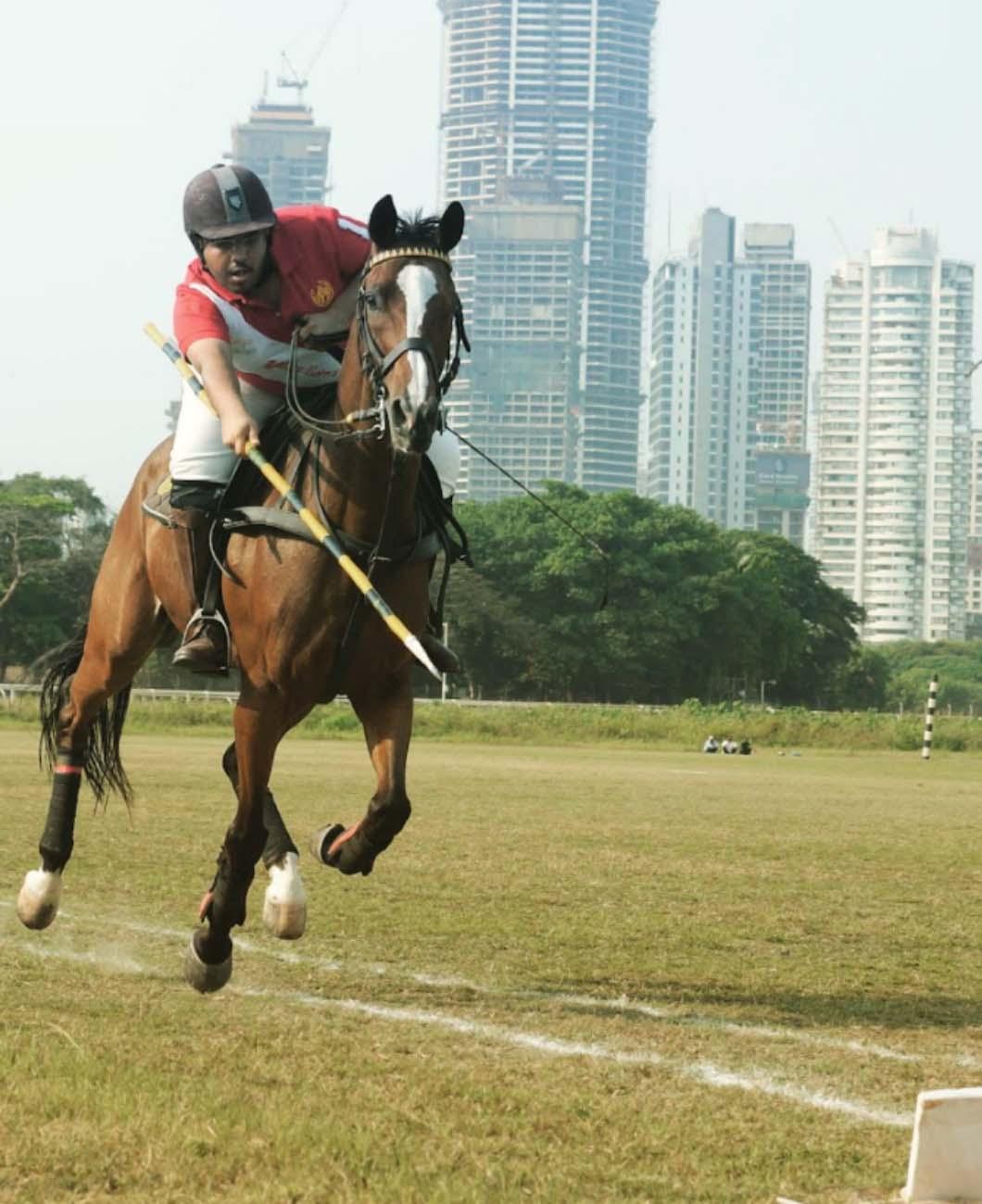 horse-activity-la-polo