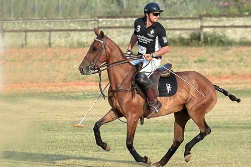 Andrea Vianini~ A Polo Player Or A Racing Driver