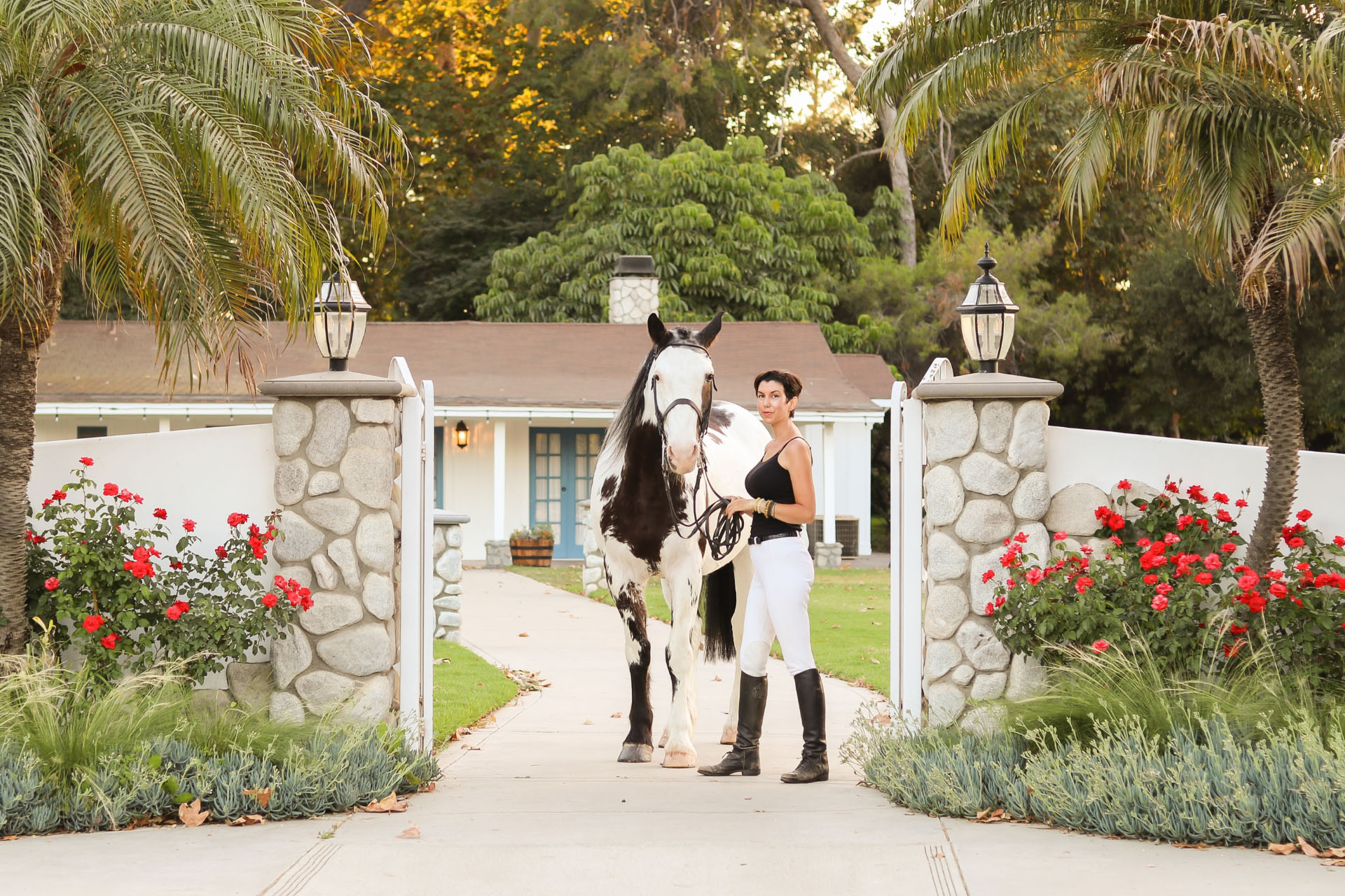 Dressage and more with Carly Heath