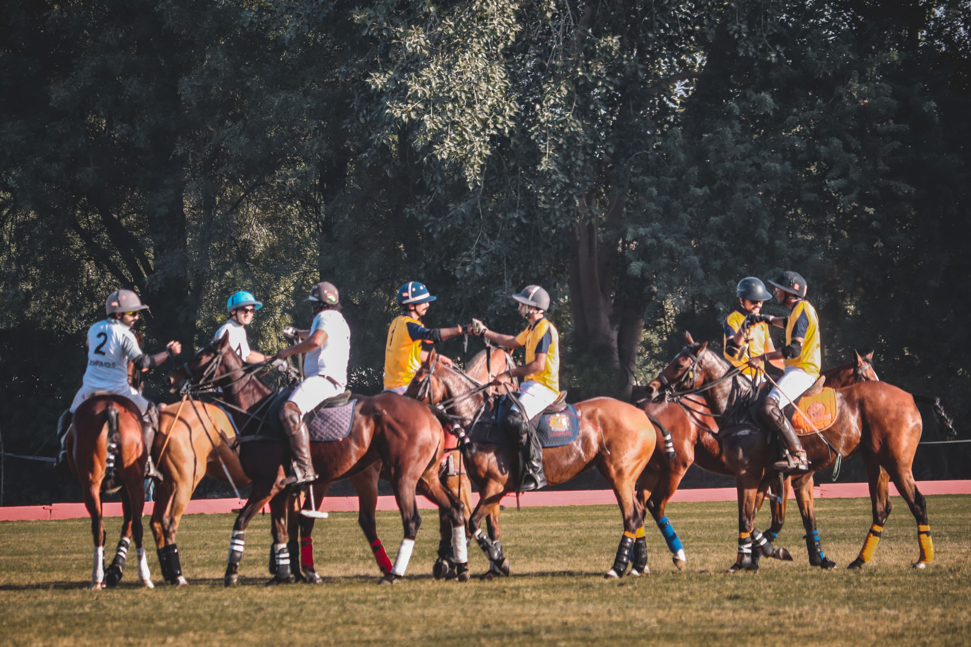 ARMY TIGERS BEAT LANCERS AT THE ARMY COMMANDER'S CUP EXHIBITION MATCH AT THE 21st JODHPUR POLO SEASON 2020!