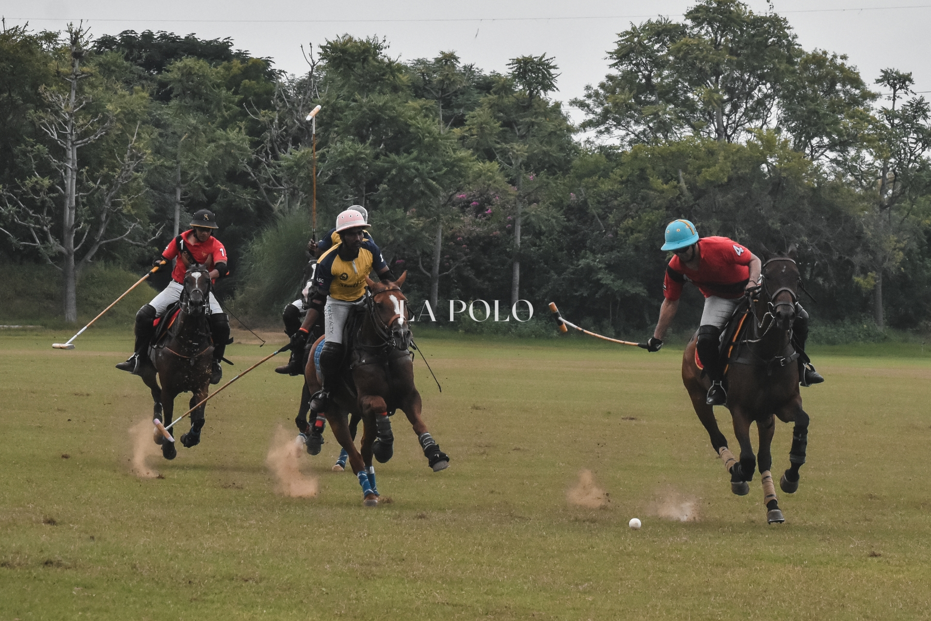 Horses, Humans and the Heavenly Season of Polo in Jaipur