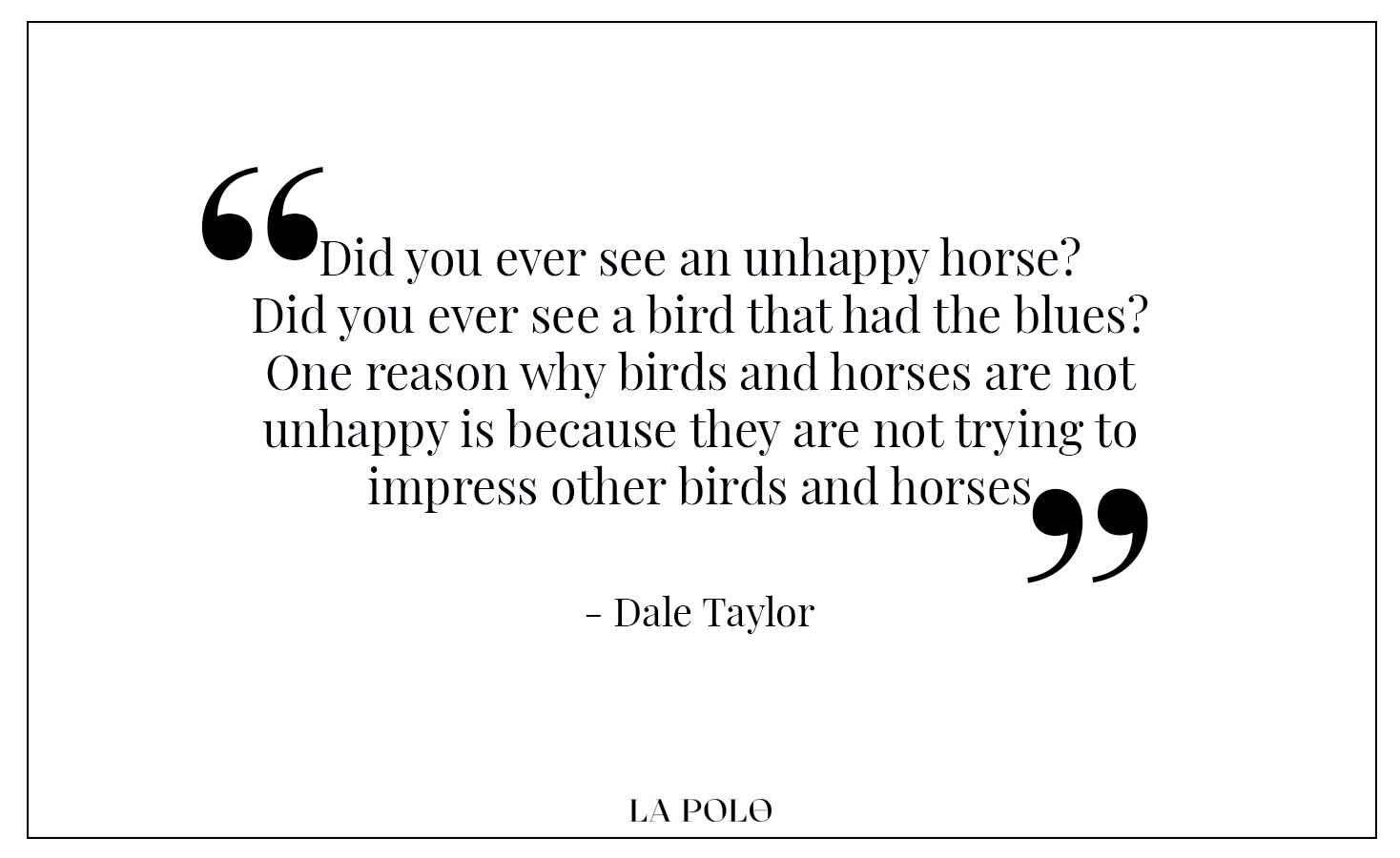 Dale Taylor quotes