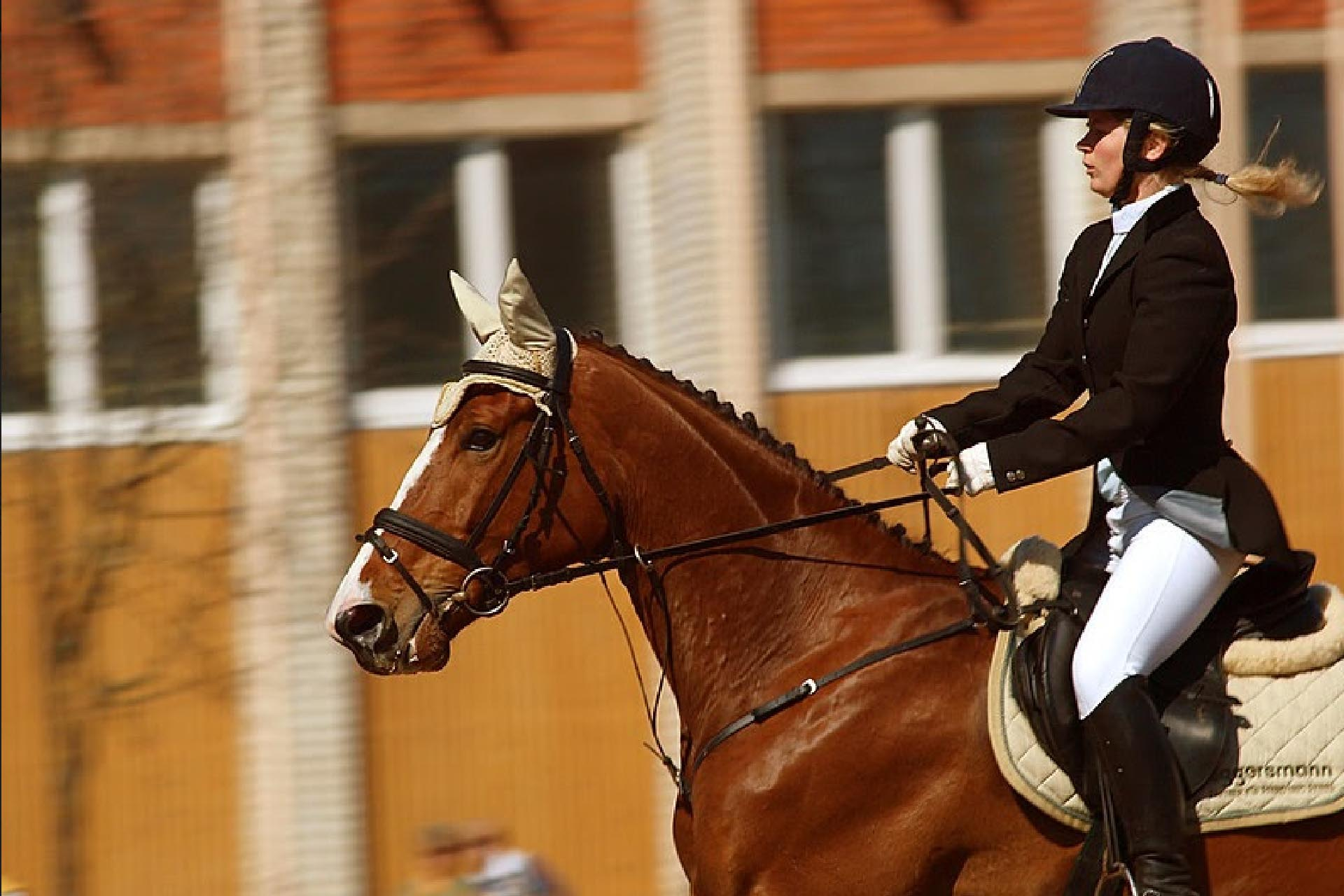 Equestrian_sports_dressage_women_player_La_Polo