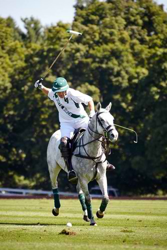 Greenwich Polo Club: Legendary White Birch's Own Backyard