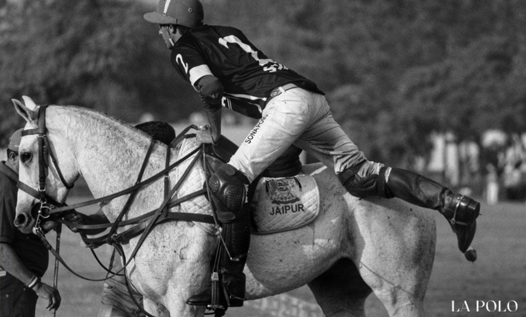 chosing-the-right-horse-la-polo
