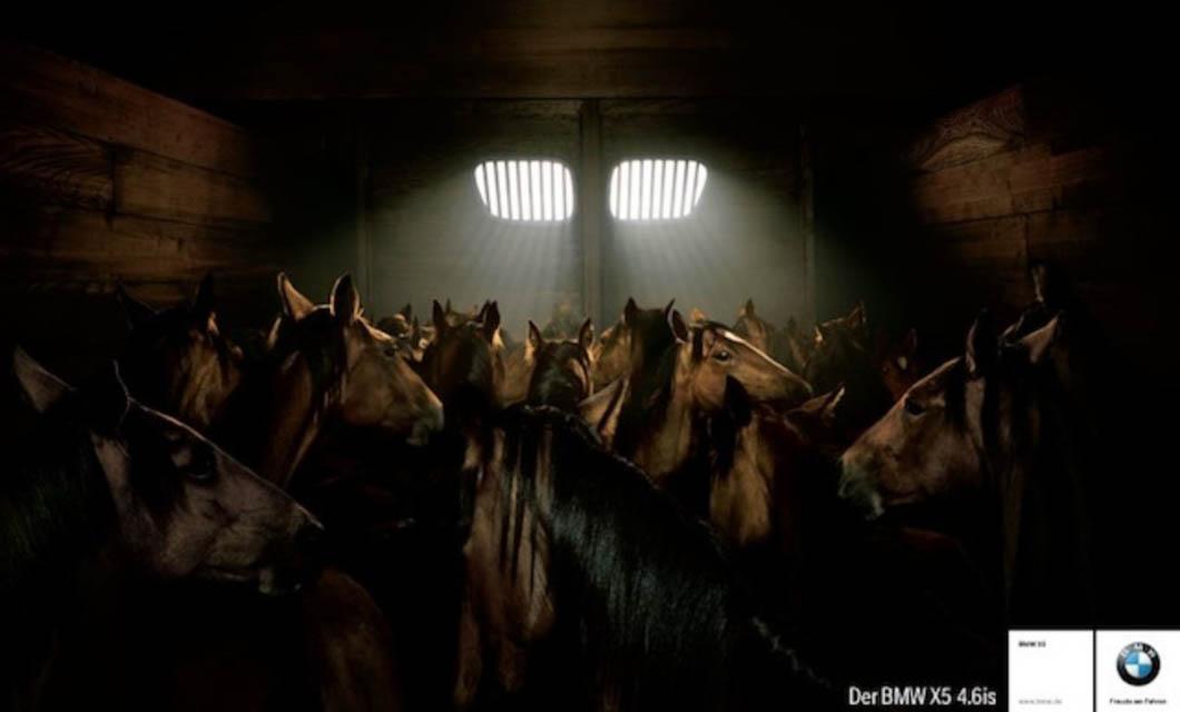 horses-in-commercials-la-polo