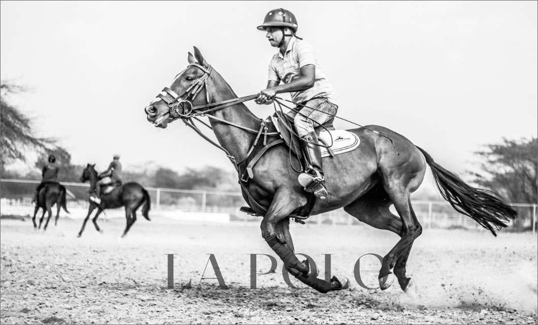 -saddle-makers-la-polo
