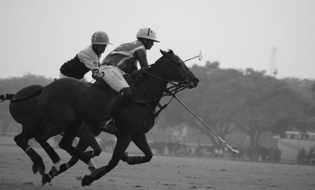 how-to-choose-the-right-horse-la-polo