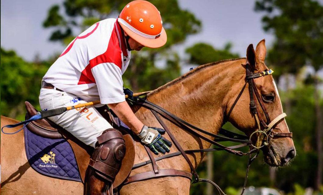 how-to-choose-a-horse-la-polo