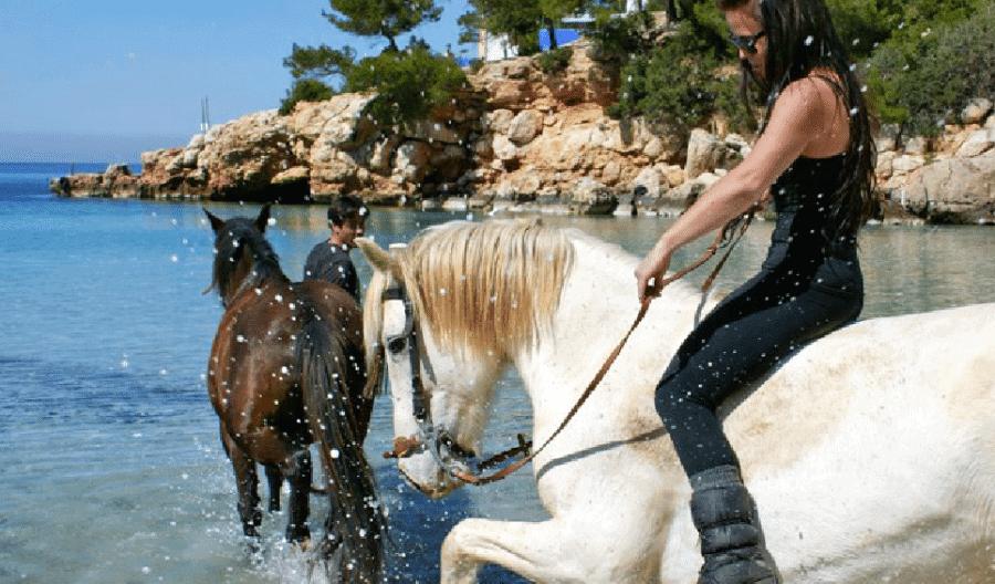 /Horse-Valley-horse-riding-la-polo