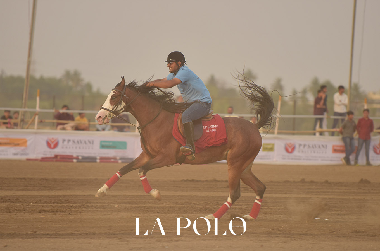 Surat Horse Show