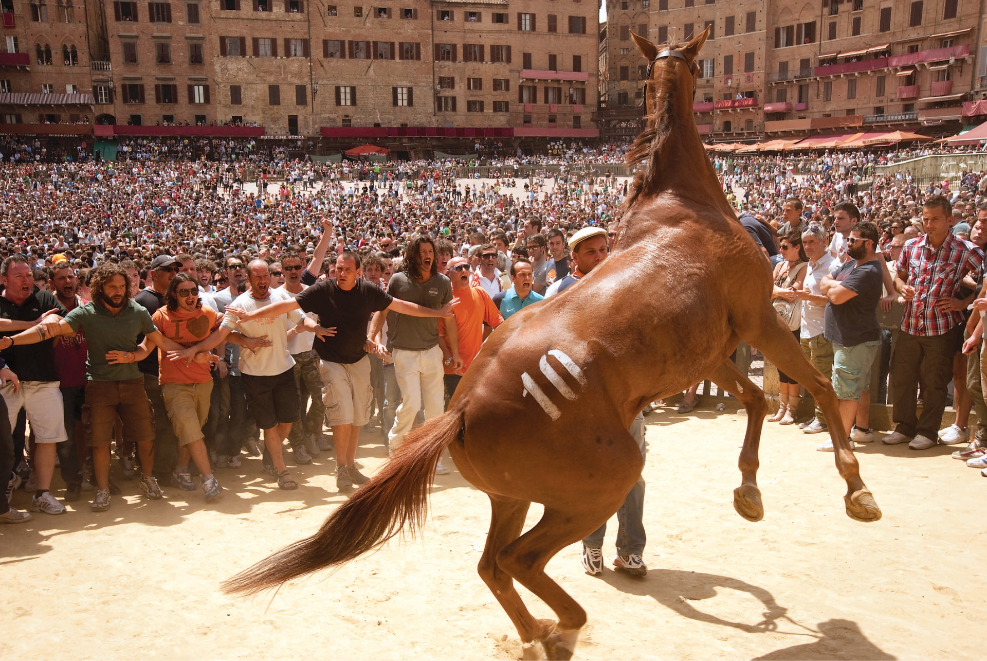 Palio fever in full swing