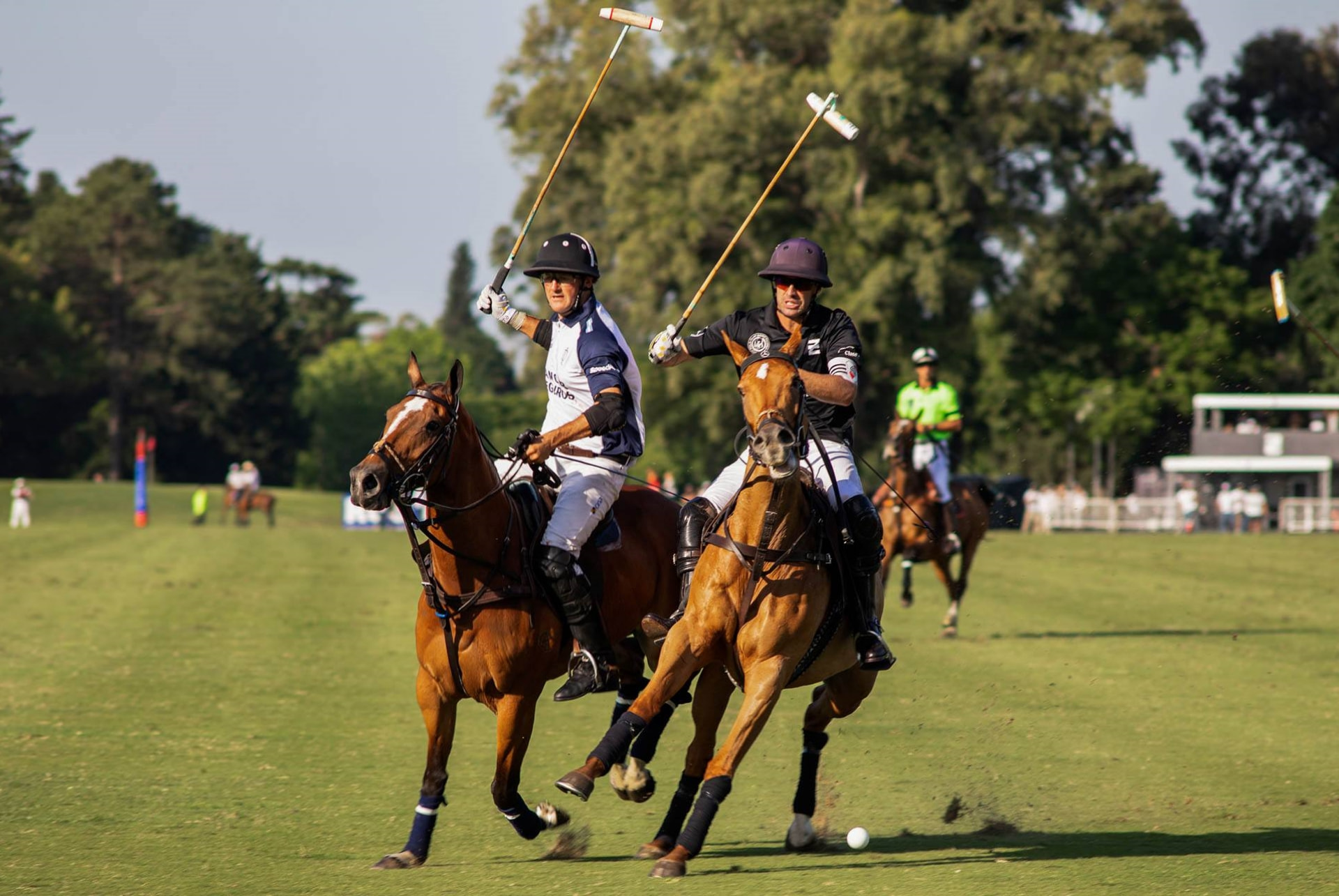 HPA announces new polo rules
