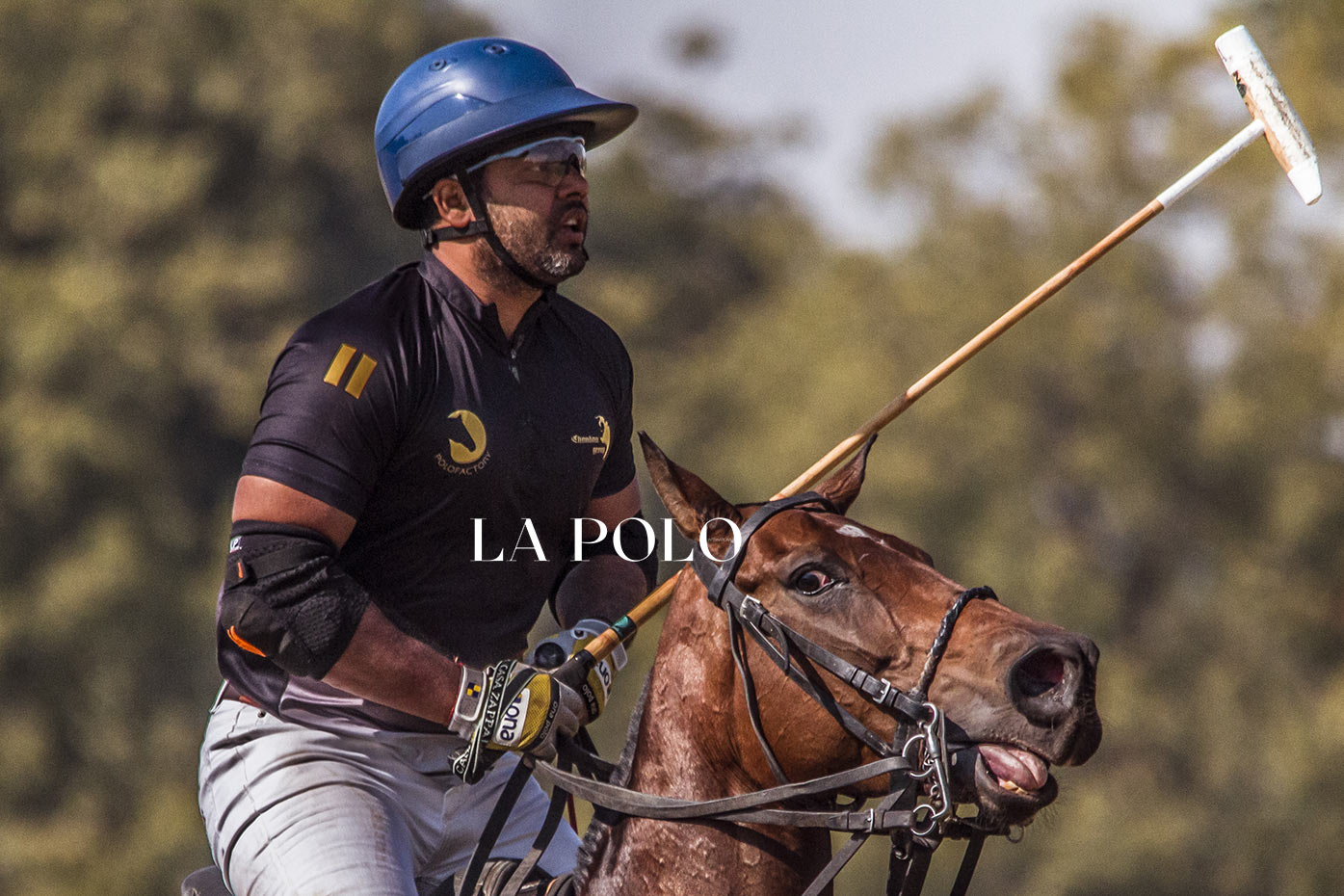 """I will do whatever I can for polo"": Ashok Chandna"