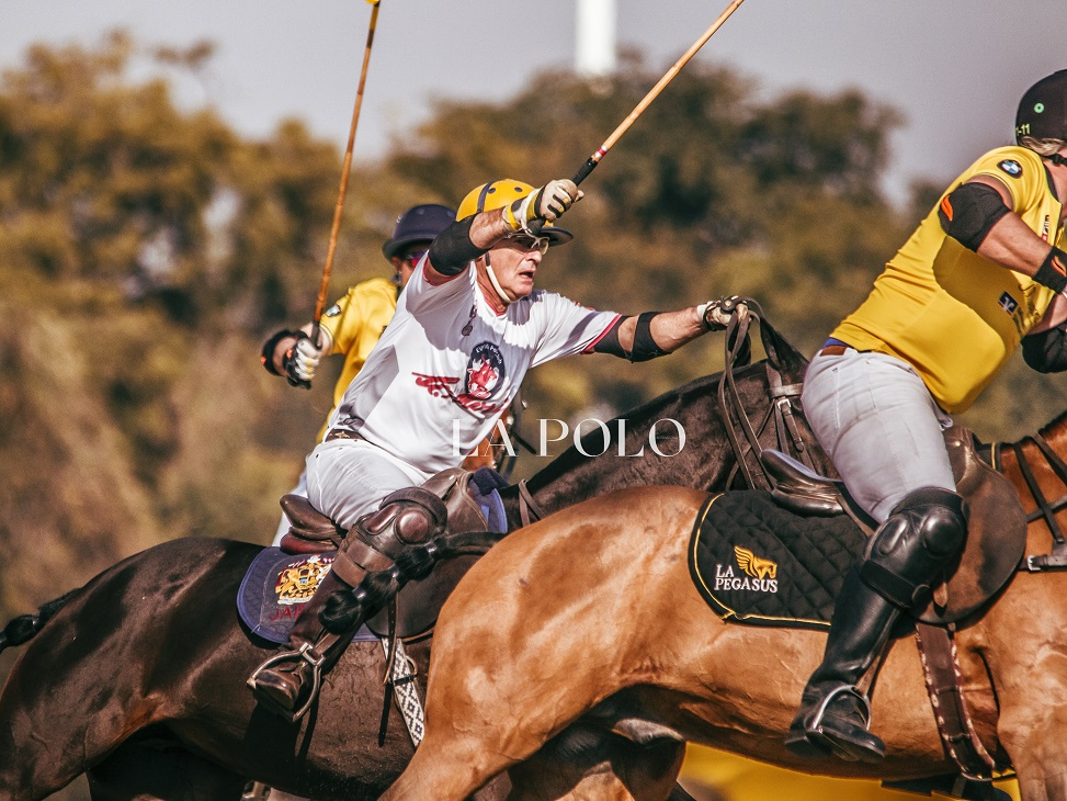 playing-shot-polopolo-match-polo-mallet