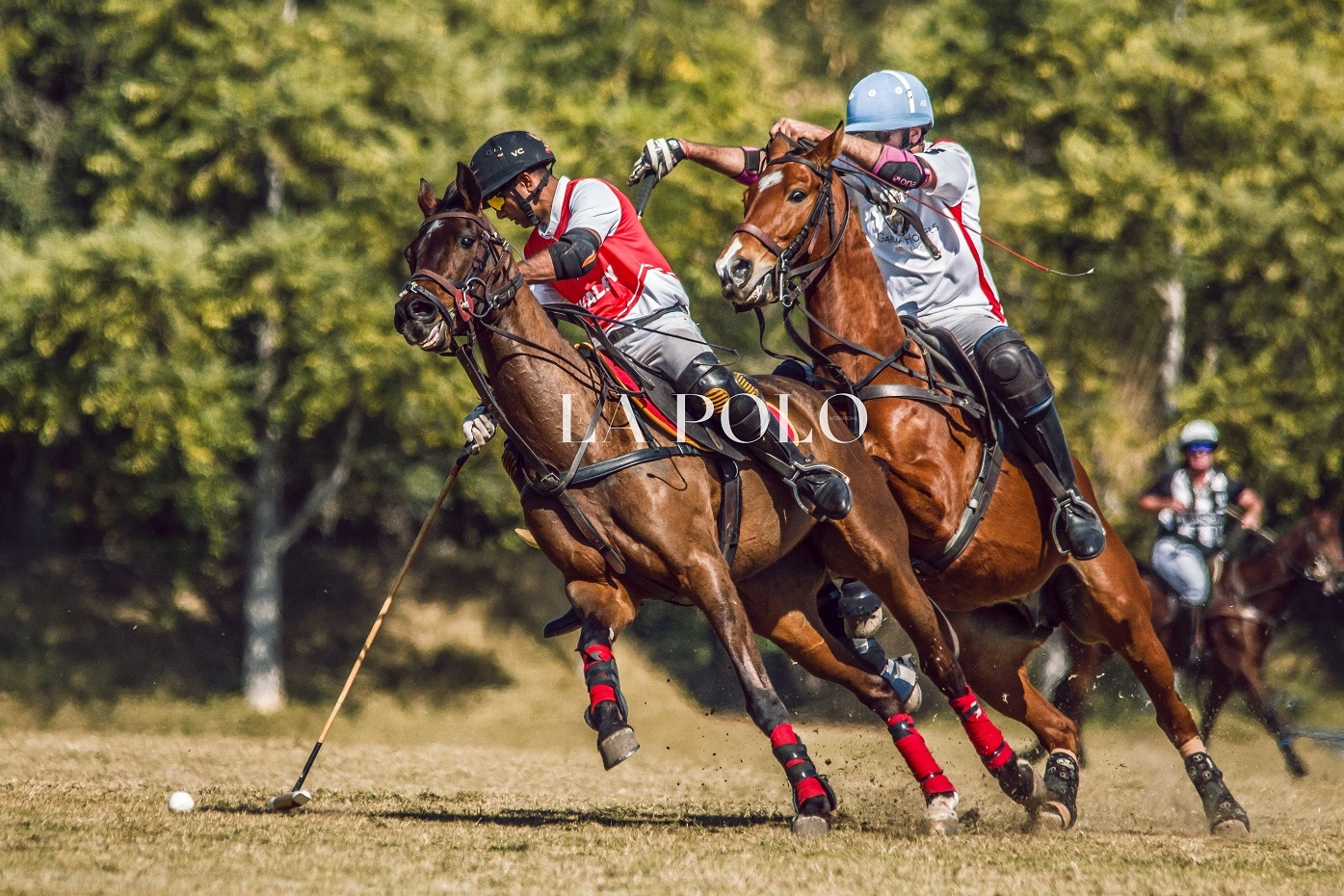 Maharaja Jiwaji Rao Scindia Gold Cup Day Two In Action