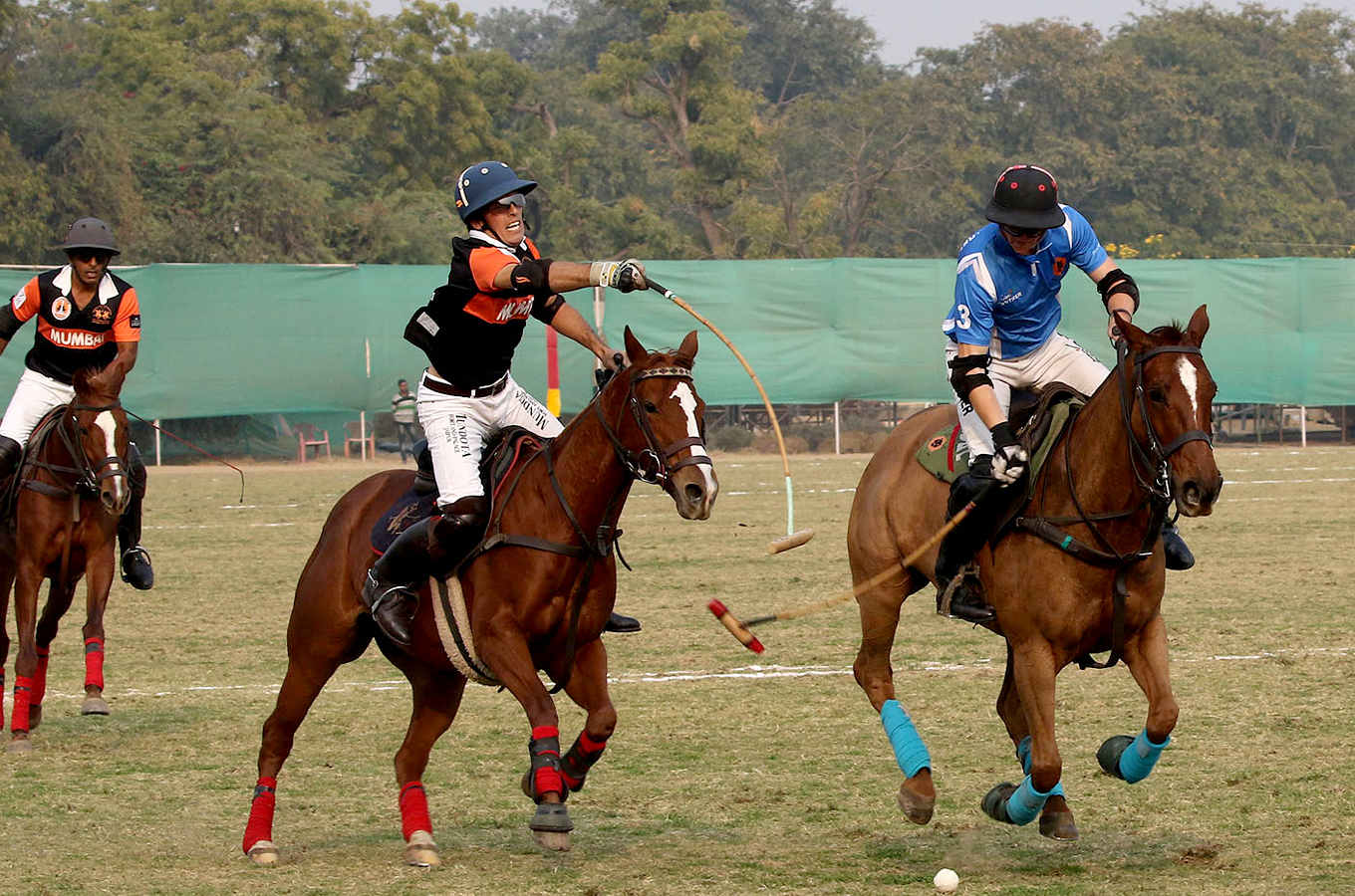 Indian Polo Season