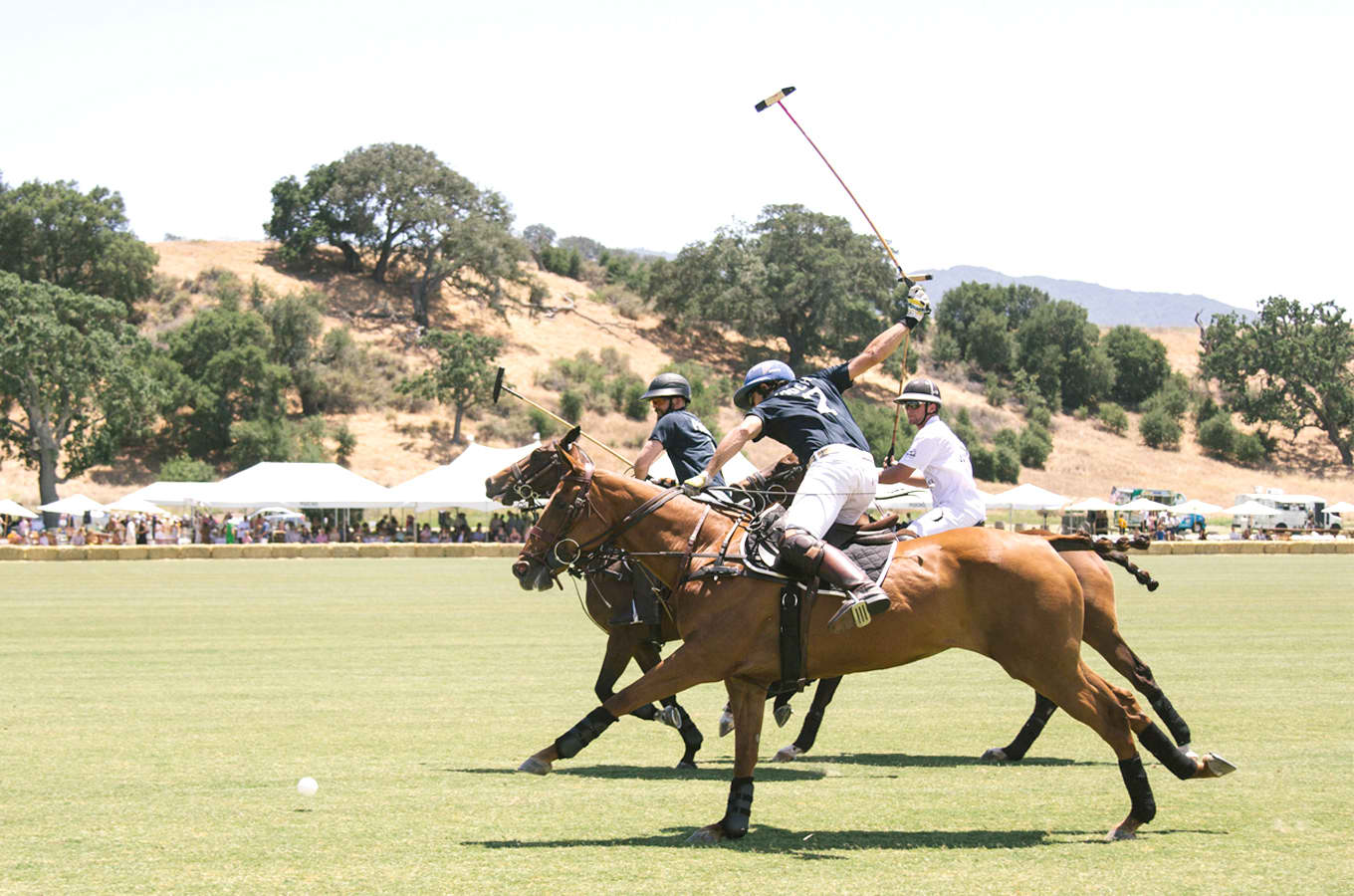Polo Classic's Comeback At SYV On June 29TH
