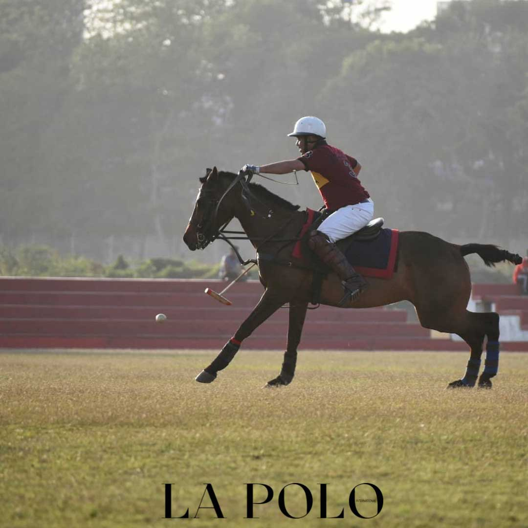 Sliver stick Polo tournament carysil