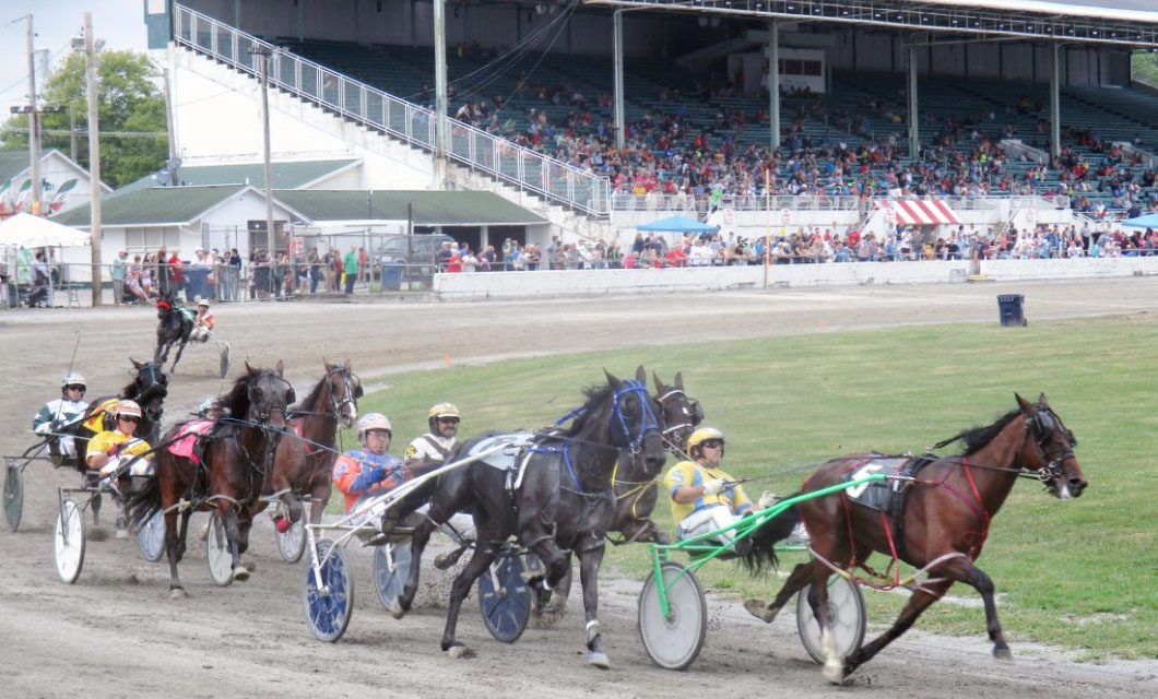 The harness races 2019 Canfield Fair