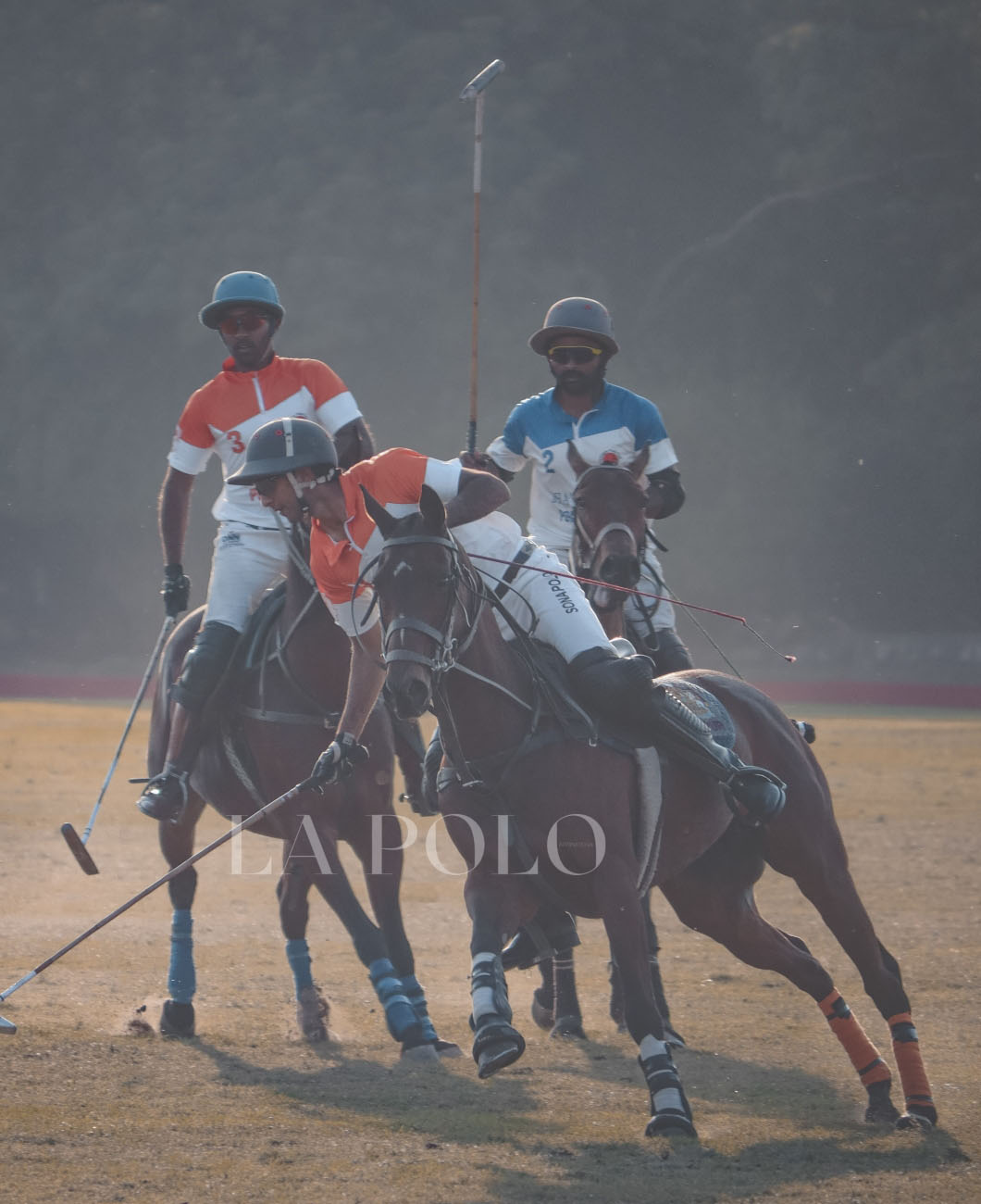polo-in-jodhpur