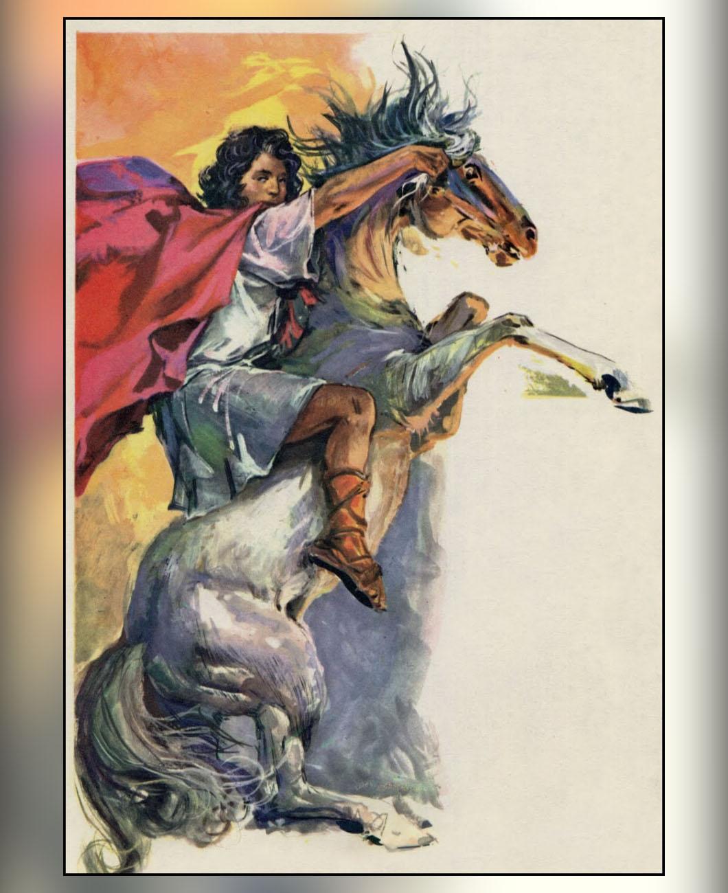 alexanders-horse-la-polo