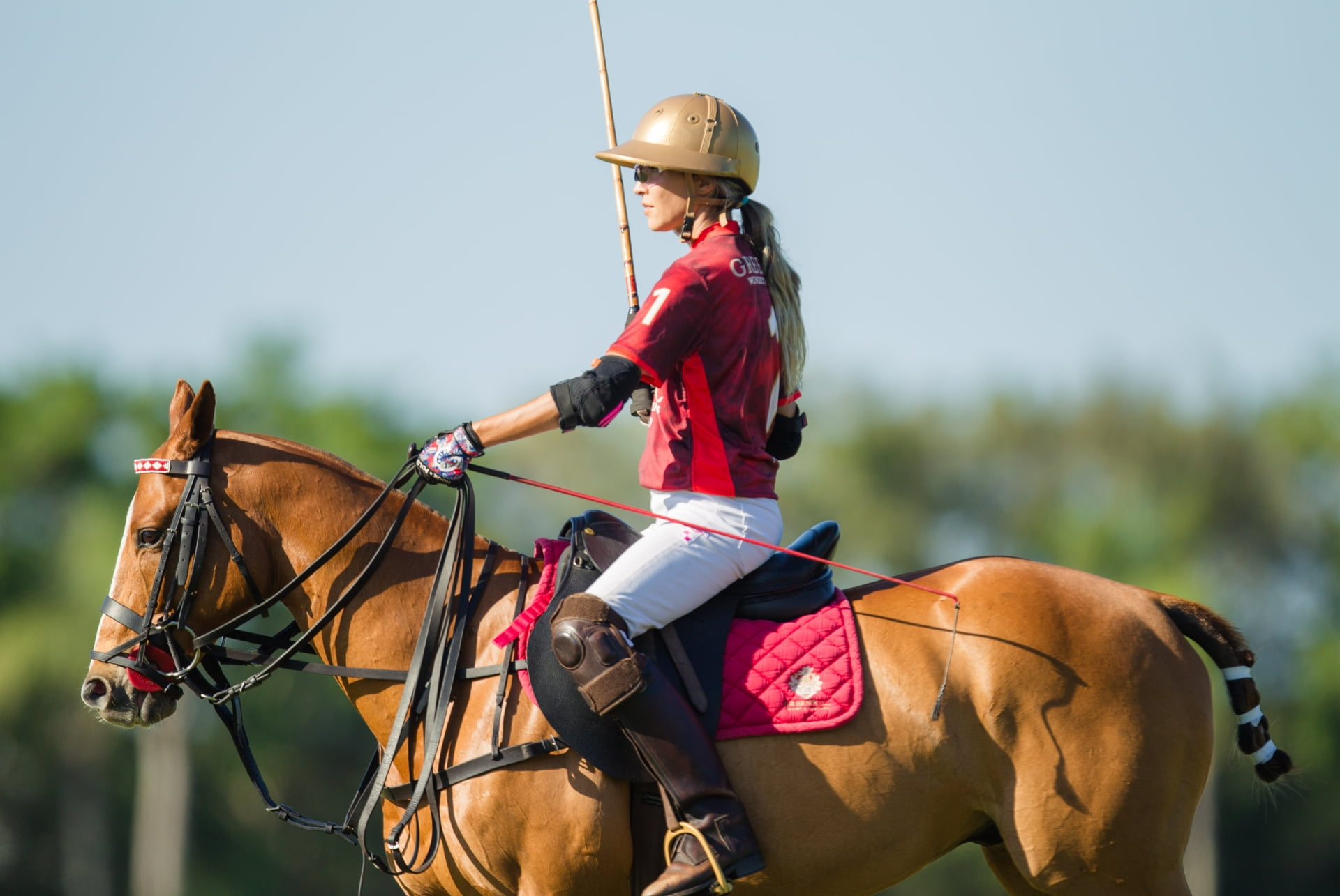 chirolacabrera Rebekah greehill la polo