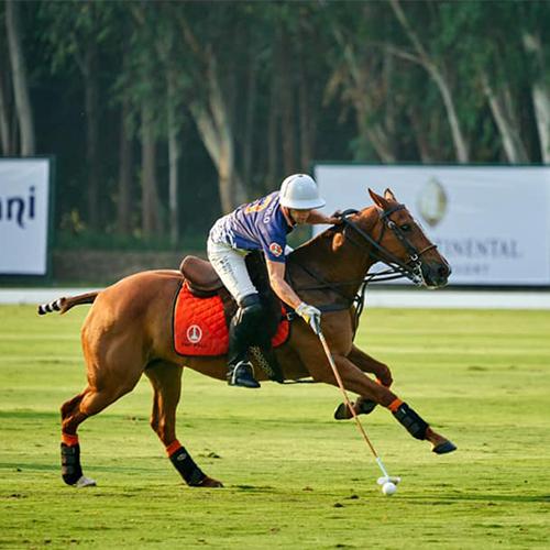 https://lapol0.s3.amazonaws.com/media/None/club-chukkas-thai-polo-equestrian-club-07-dec-19-08-dec-19.jpg