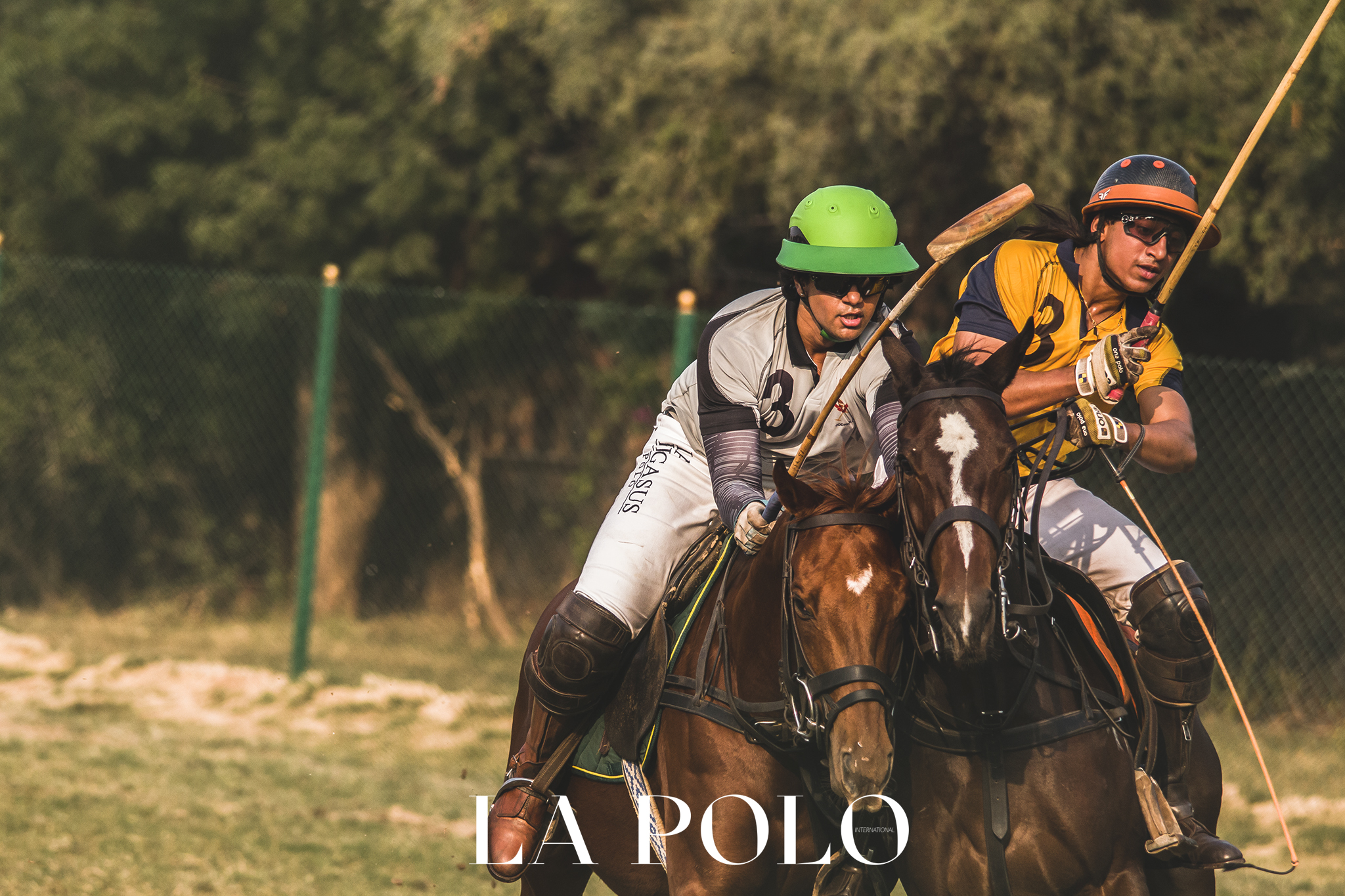 THE HERMES CUP-ARENA POLO!