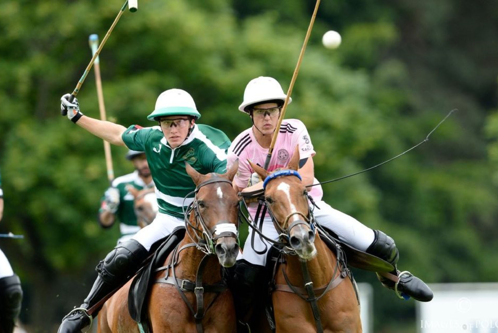Polo Around The World
