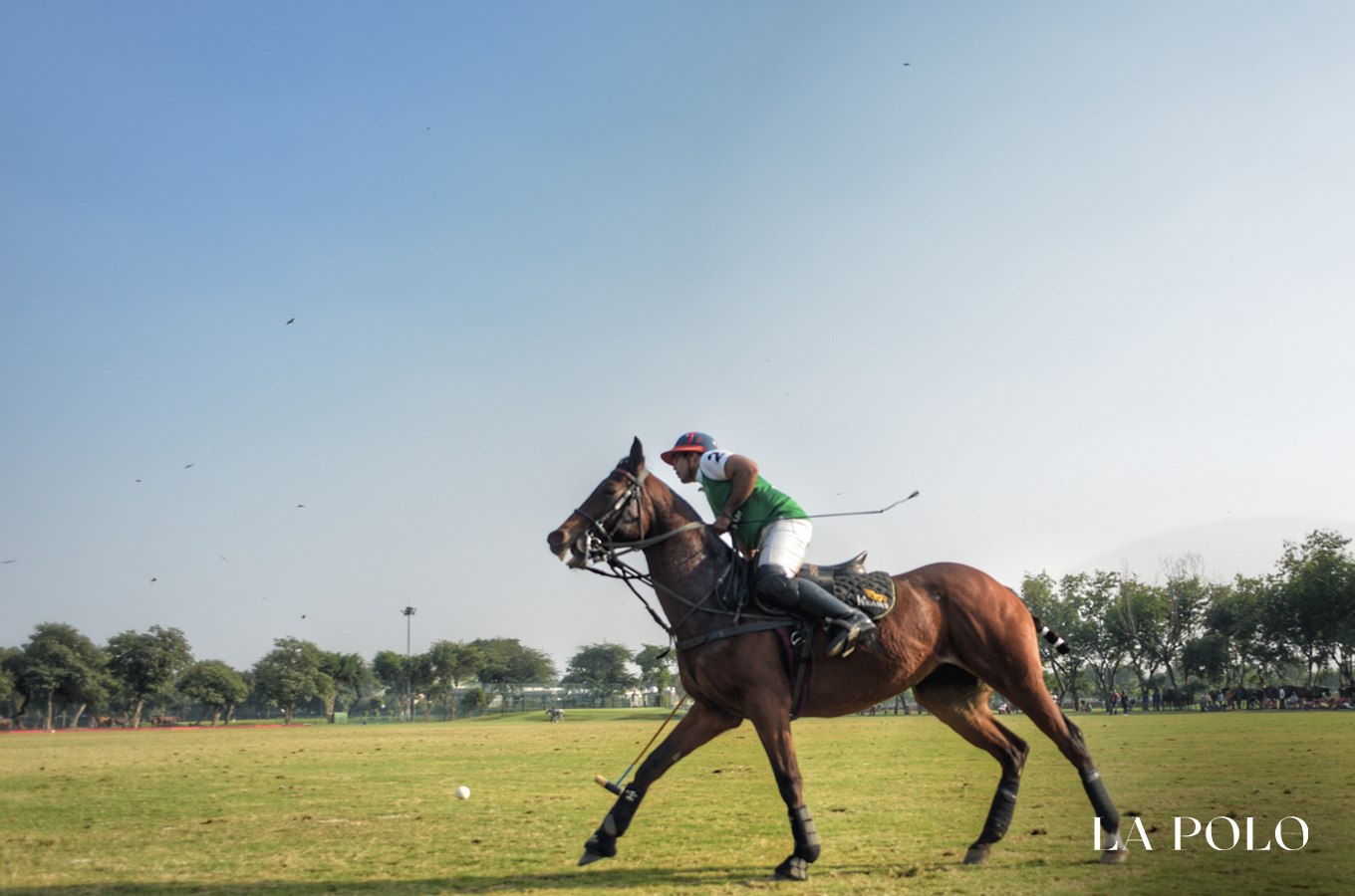 yes bank indian master , sona polo , Rajnigandha Achievers , Palermo Polo,Jindal Panther/Garcha Lions ,Sona Polo, Delhi Polo  Season , jaipur polo ground ,indian polo , polo season , polo season 2018