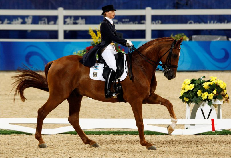 History of Dressage, Olympic history of Dressage, Modern Dressage, Dressage Masters, Bollywood's association with Equestrian sports,Dressage, Randeep Hooda, dresser, Stockholm