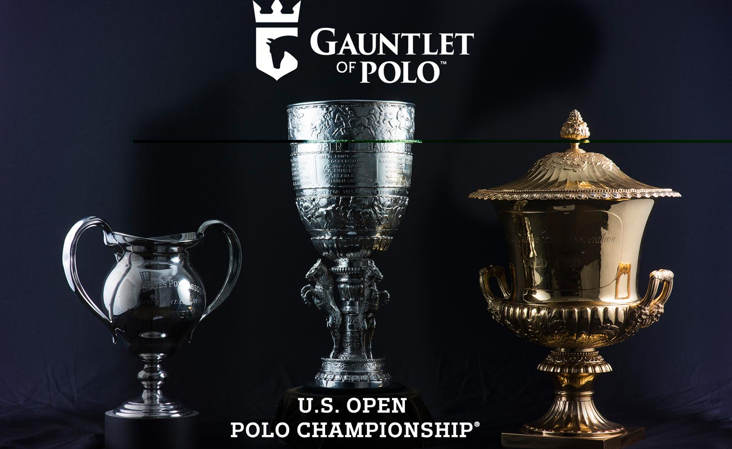 Gauntlet of polo
