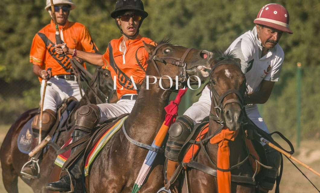 horse-polo-la-polo