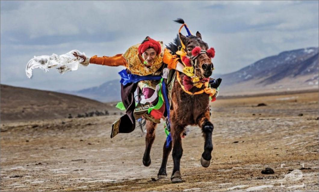 horse-racing-festival-august-la-polo