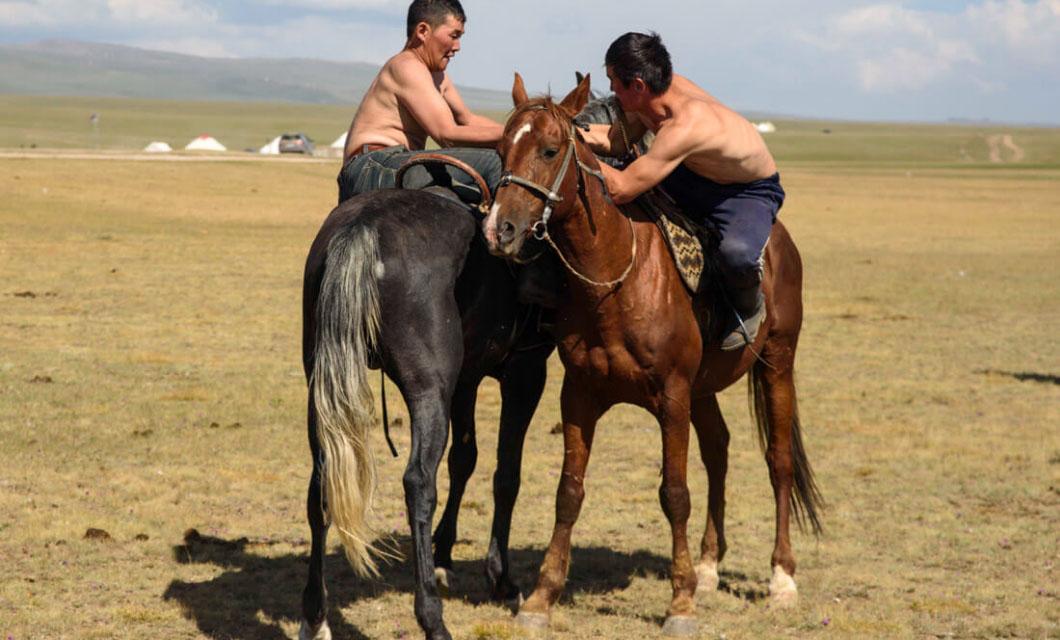 horseback-wrestling-la-polo