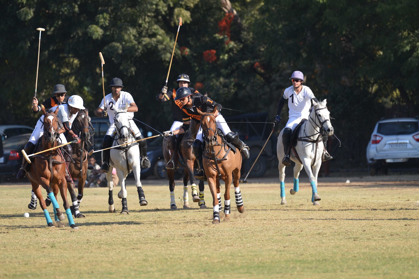19th Jodhpur Polo Season 2018