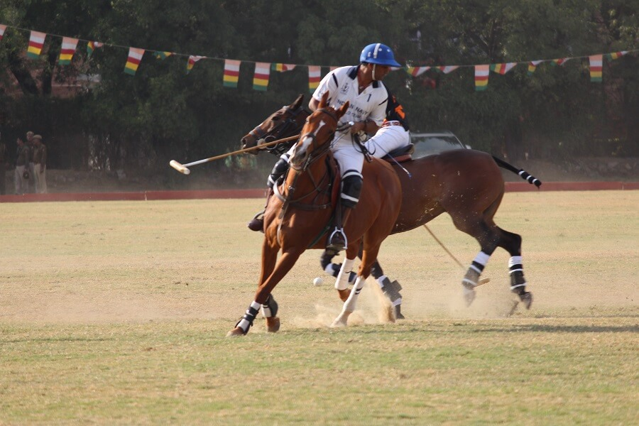 Jodhpur Golden Jubilee Cup