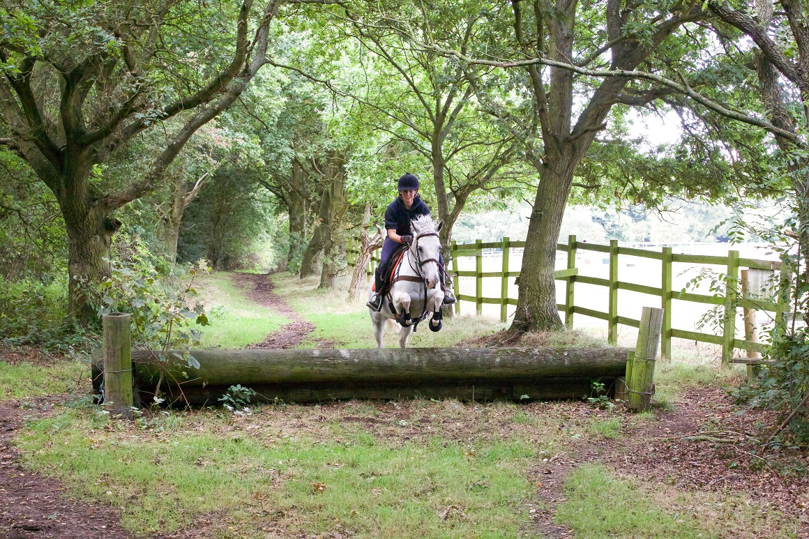 jumping-woods-ireland-things-to-do-lapolo