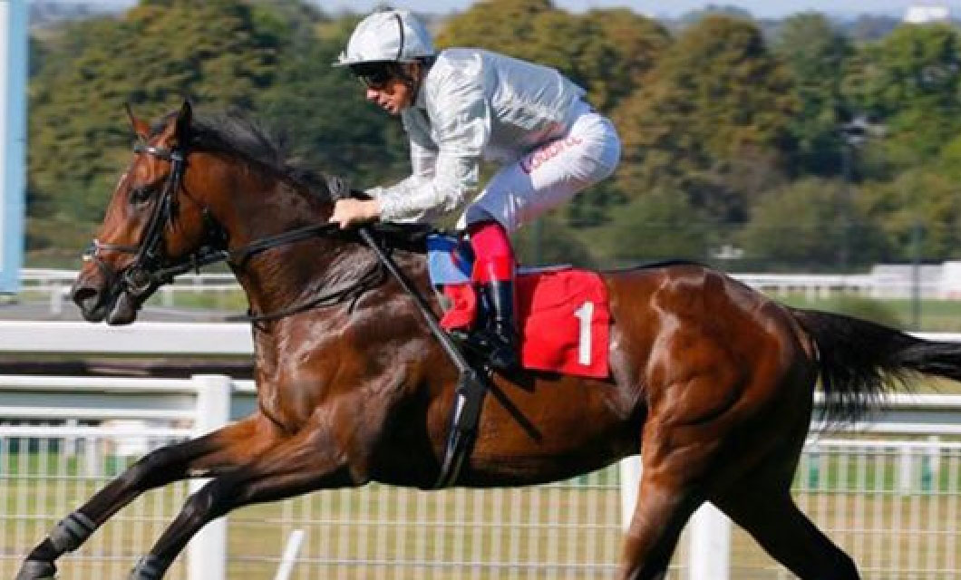 kentucky-derby-horses-la-polo