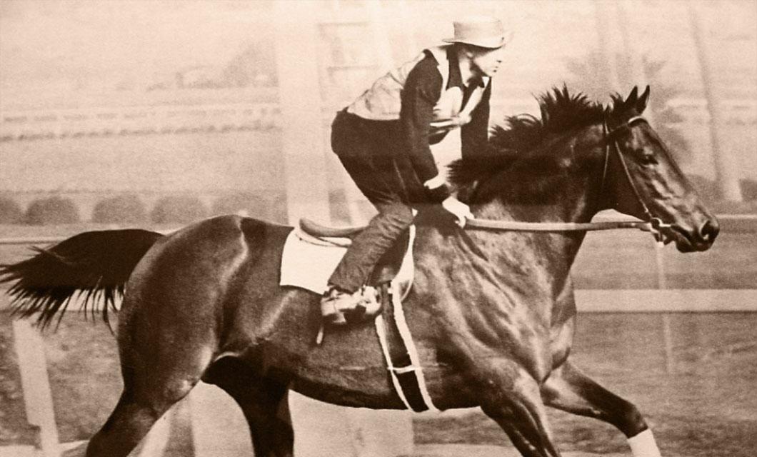legendary-hiorses-la-polo