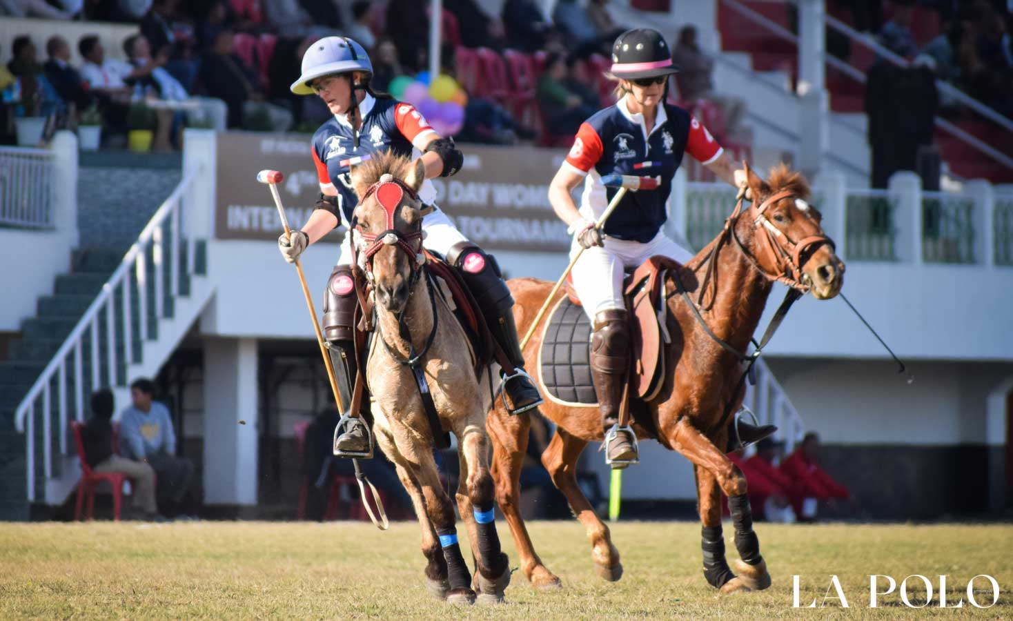 manipur polo  ,polo ponies