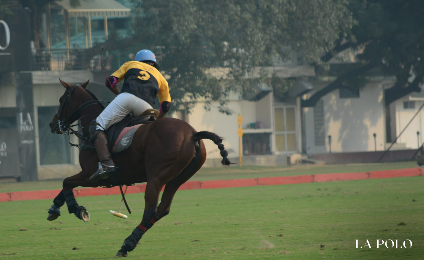 polo player field