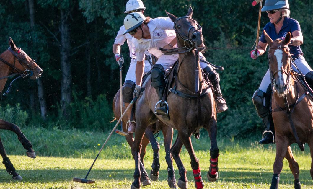 polo-players-edition-la-polo
