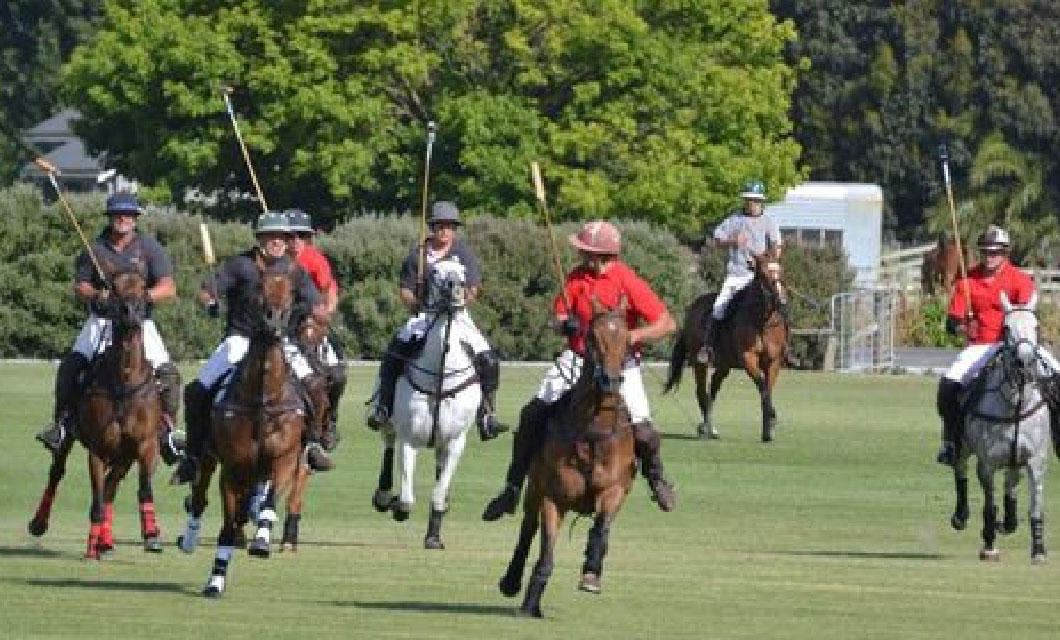 polo-trophies-polo-in-new-zealand-lapolo3